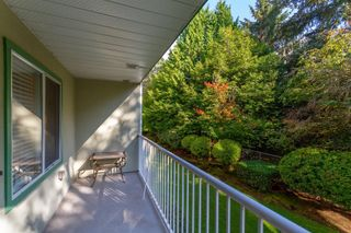 Photo 19: 109 19236 FORD Road in Pitt Meadows: Central Meadows Condo for sale : MLS®# R2615829
