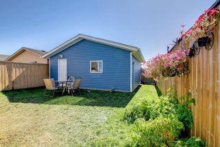 Photo 41: 67 Tarington Place NE in Calgary: Taradale Detached for sale : MLS®# A1146117