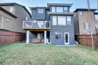 Photo 48: 138 Nolanshire Crescent NW in Calgary: Nolan Hill Detached for sale : MLS®# A1100424