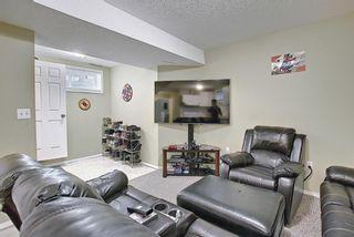 Photo 30: 145 Taravista Crescent NE in Calgary: Taradale Detached for sale : MLS®# A1125771