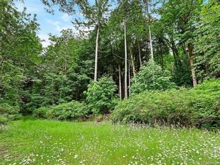 Photo 52: Lot 2 Eagles Dr in : CV Courtenay North Land for sale (Comox Valley)  : MLS®# 869395