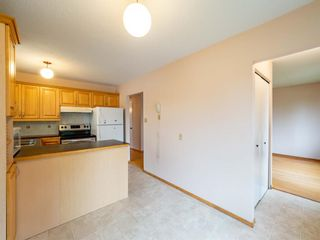 Photo 9: 547 Sabrina Road SW in Calgary: Southwood Detached for sale : MLS®# A1146796