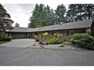 Photo 47: 34741 IMMEL Street in Abbotsford: Abbotsford East House for sale : MLS®# F1321796
