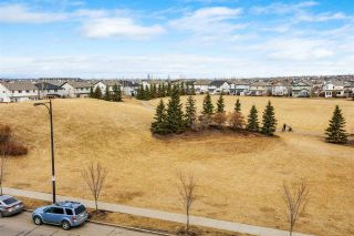 Photo 23: 7422 7327 SOUTH TERWILLEGAR Drive in Edmonton: Zone 14 Condo for sale : MLS®# E4236530