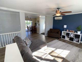 Photo 14: 56 Douglas Road in Alma: 108-Rural Pictou County Residential for sale (Northern Region)  : MLS®# 202020036