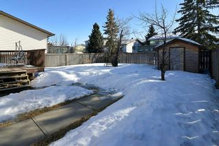 Photo 24: 139 CASTLEGLEN Road NE in Calgary: Castleridge House for sale : MLS®# C4170209