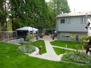 Photo 7: 32275 MCRAE Avenue in Mission: Mission BC House for sale : MLS®# R2264302