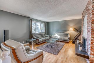 Photo 7: 543 Lake Newell Crescent SE in Calgary: Lake Bonavista Detached for sale : MLS®# A1081450