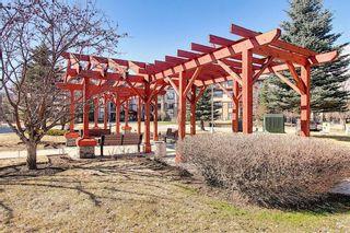 Photo 47: 1410 LAKE FRASER Green SE in Calgary: Lake Bonavista Apartment for sale : MLS®# C4294063