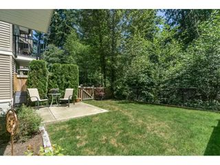 """Photo 20: 55 11720 COTTONWOOD Drive in Maple Ridge: Cottonwood MR Townhouse for sale in """"COTTONWOOD GREEN"""" : MLS®# R2184980"""