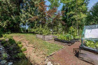 Photo 19: 11407 284TH Street in Maple Ridge: Whonnock House for sale : MLS®# R2189182