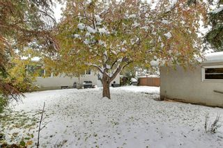 Photo 20: 8 Lenton Place SW in Calgary: North Glenmore Park Detached for sale : MLS®# A1070679