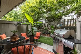 """Photo 17: 47 20326 68 Avenue in Langley: Willoughby Heights Townhouse for sale in """"SUNPOINTE"""" : MLS®# R2610836"""