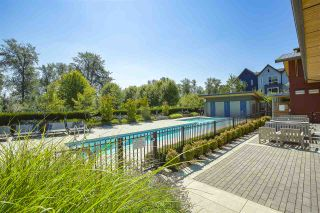 "Photo 31: 111 2393 RANGER Lane in Port Coquitlam: Riverwood Condo for sale in ""FREMONT EMERALD"" : MLS®# R2486961"