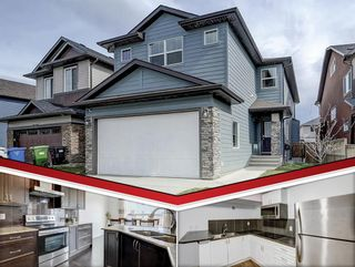 Main Photo: 36 Skyview Shores Link NE in Calgary: Skyview Ranch Detached for sale : MLS®# A1148401