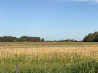 Photo 20: 57525 Rg Rd 214: Rural Sturgeon County Rural Land/Vacant Lot for sale : MLS®# E4237624