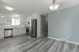 Photo 12: 23 Erin Meadows Court SE in Calgary: Erin Woods Detached for sale : MLS®# A1146245