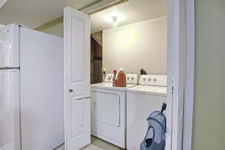 Photo 42: 145 Taravista Crescent NE in Calgary: Taradale Detached for sale : MLS®# A1125771