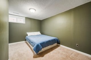Photo 19: 7407 Fountain Road SE in Calgary: Fairview Detached for sale : MLS®# A1103326