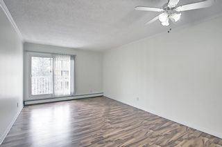 Photo 5: 408 732 57 Avenue SW in Calgary: Windsor Park Apartment for sale : MLS®# A1134392