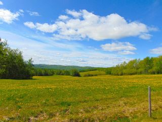 Photo 13: 13934 PACKHAM FRONTAGE Road: Charlie Lake Agri-Business for sale (Fort St. John (Zone 60))  : MLS®# C8039465