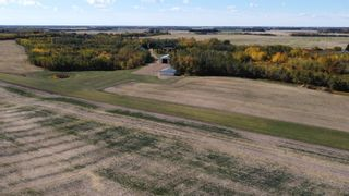 Photo 29: 56407 RGE RD 240: Rural Sturgeon County House for sale : MLS®# E4264656