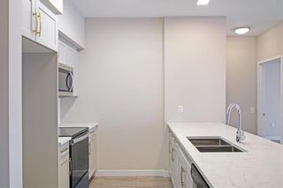 Photo 17: PH11 399 Stan Bailie Drive in Winnipeg: South Pointe Rental for rent (1R)  : MLS®# 202121858