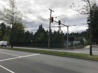 Photo 2: 13314 64 Avenue in Surrey: Panorama Ridge Land for sale : MLS®# R2433669