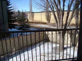 Photo 30: 209 11218 80 Street in Edmonton: Zone 09 Condo for sale : MLS®# E4241143