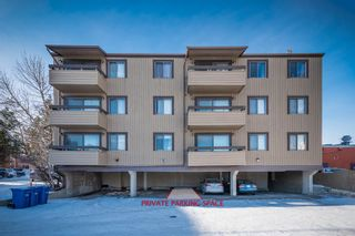 Photo 3: 302 1222 Kensington Close NW in Calgary: Hillhurst Apartment for sale : MLS®# A1056471