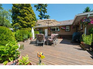 Photo 14: 1361 STAYTE Street: White Rock House for sale (South Surrey White Rock)  : MLS®# F1431789