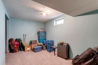 Photo 23: 11 Bedwood Place NE in Calgary: Beddington Heights Detached for sale : MLS®# A1100658
