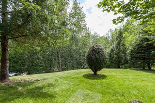 """Photo 35: 48 11737 236 Street in Maple Ridge: Cottonwood MR Townhouse for sale in """"Maplewood"""" : MLS®# R2460701"""