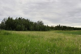 Photo 9: 33538 Rg RD 30: Rural Mountain View County Land for sale : MLS®# C4305650
