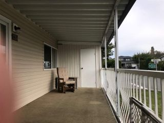 "Photo 4: 226 3665 244 Street in Langley: Otter District Manufactured Home for sale in ""Langley Grove Estates"" : MLS®# R2410588"