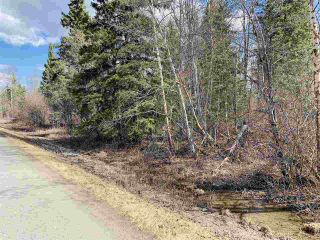 Photo 1: LOT 3 WOODLAND Road in Prince George: Beaverley Land for sale (PG Rural West (Zone 77))  : MLS®# R2453496