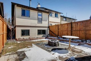 Photo 27: 19 Templemont Drive NE in Calgary: Temple Semi Detached for sale : MLS®# A1082358
