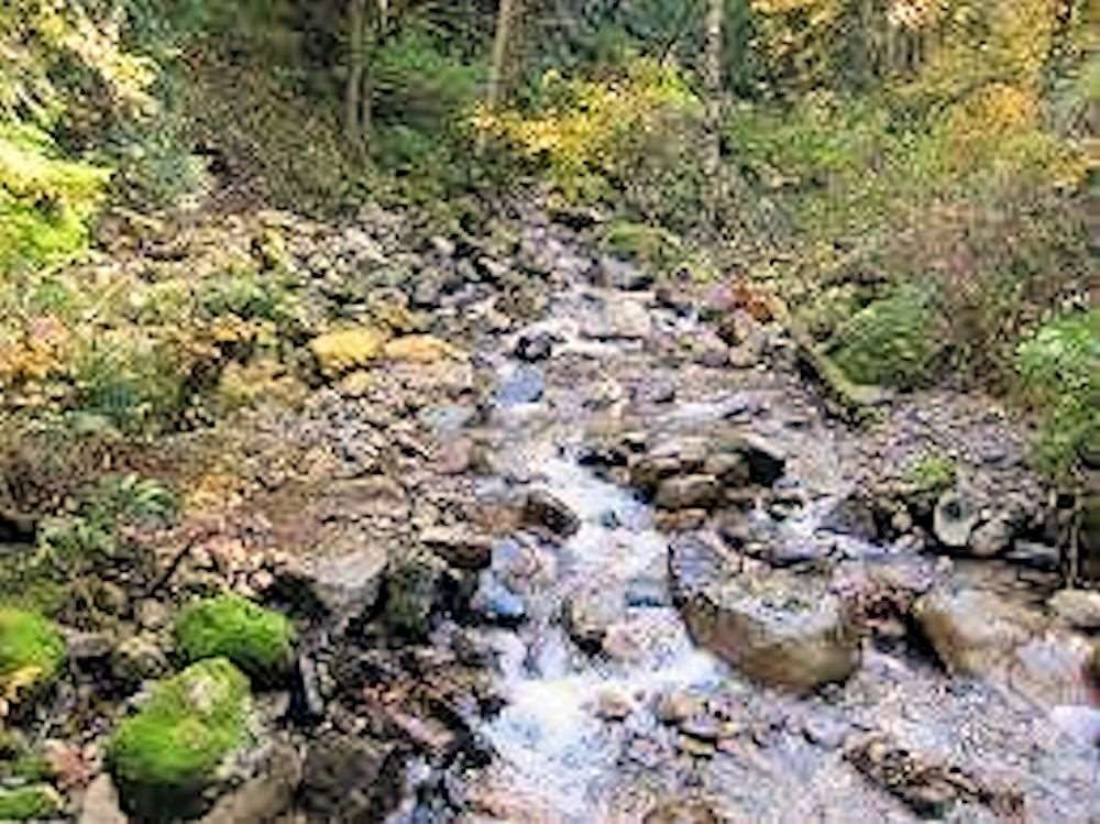 """Photo 14: Photos: #LT.2 37885 BAKSTAD Road in Abbotsford: Sumas Mountain Land for sale in """"Rock Cliff Park"""" : MLS®# R2118217"""