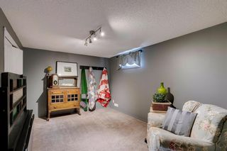 Photo 25: 436 38 Street SW in Calgary: Spruce Cliff Detached for sale : MLS®# A1091044