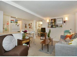 """Photo 15: 561 W 20TH Avenue in Vancouver: Cambie House for sale in """"DOUGLAS PARK"""" (Vancouver West)  : MLS®# V1093678"""