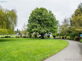 Photo 15: 201 3277 Glasgow Ave in VICTORIA: SE Quadra Condo for sale (Saanich East)  : MLS®# 758094