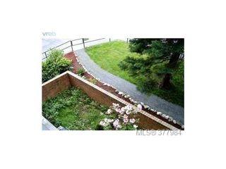 Photo 7: 306 1630 Quadra St in VICTORIA: Vi Central Park Condo for sale (Victoria)  : MLS®# 758941