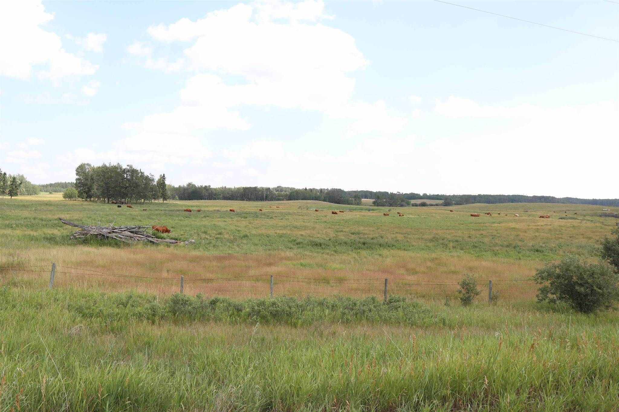 Main Photo: Twp 510 RR 33: Rural Leduc County Rural Land/Vacant Lot for sale : MLS®# E4256128