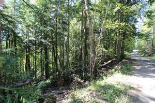 Photo 3: Lot 127 Vickers Trail: Land Only for sale : MLS®# 10071267