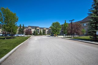 Photo 25: 325 52 Cranfield Link SE in Calgary: Cranston Apartment for sale : MLS®# A1123633