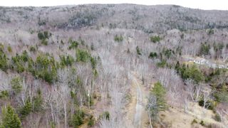 Photo 10: Lot 1&2 East Bay Highway in Big Pond: 207-C. B. County Vacant Land for sale (Cape Breton)  : MLS®# 202108705