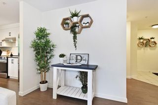 Photo 2: 204 33728 KING Road: Condo for sale in Abbotsford: MLS®# R2593255