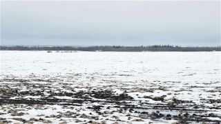 Photo 10: 55506 RGE RD 222: Rural Sturgeon County Land Commercial for sale : MLS®# E4232910