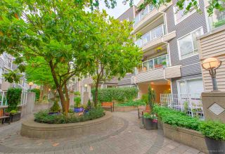 "Photo 7: 304 789 W 16TH Avenue in Vancouver: Fairview VW Condo for sale in ""Sixteen Willows"" (Vancouver West)  : MLS®# R2474064"