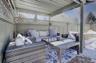Photo 41: 716 Thorneycroft Drive NW in Calgary: Thorncliffe Detached for sale : MLS®# A1089145